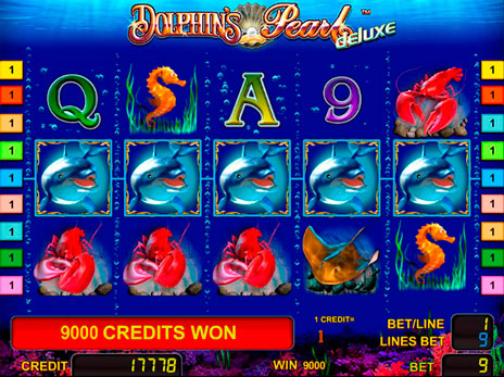 dolphins_pearl_deluxe_1